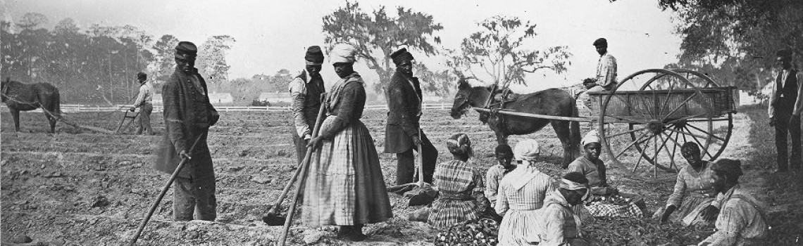 "Case Study on Slavery and the Economic History of the U.S. Shows an  ""Intersection of Violence and Innovation"""